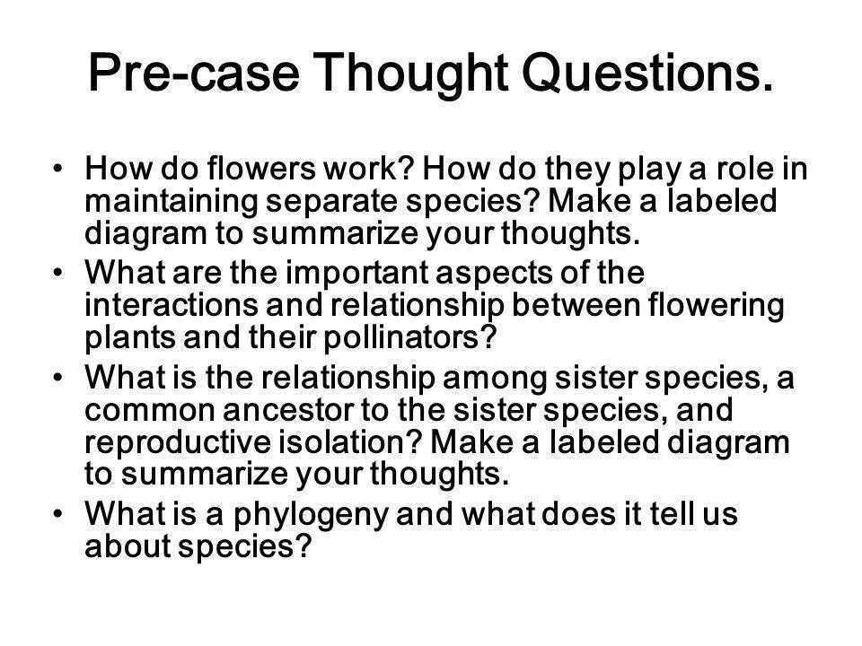Pre-case Thought Questions.