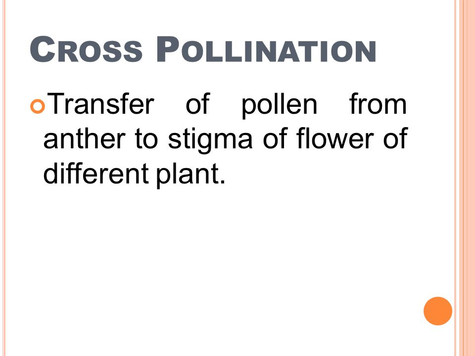 Cross Pollination Transfer of pollen from anther to stigma of flower of different plant.