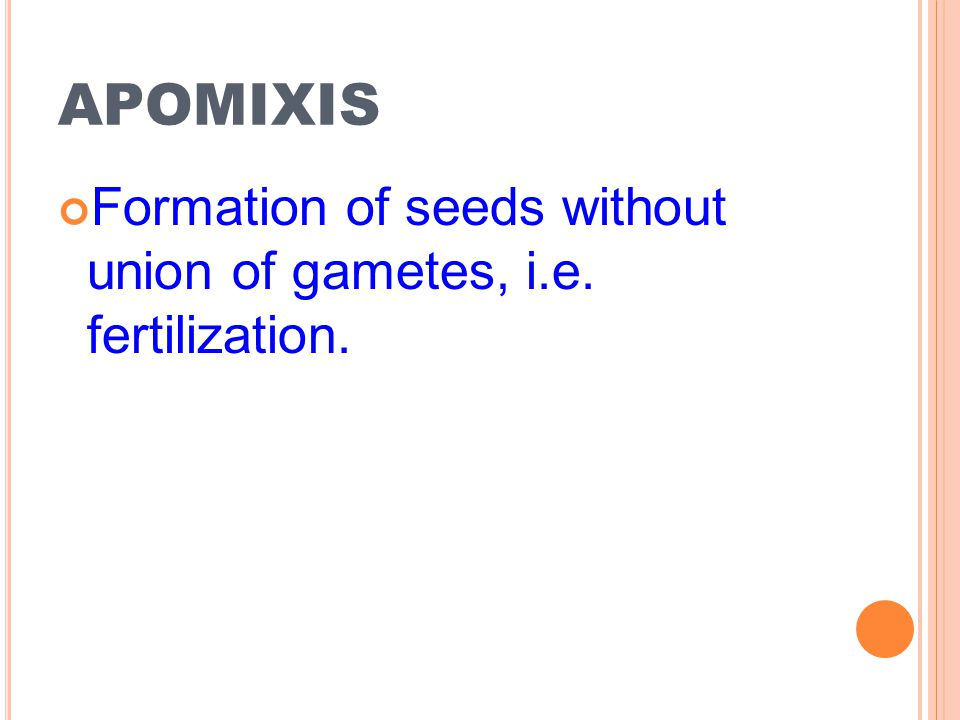apomixis Formation of seeds without union of gametes, i.e. fertilization.