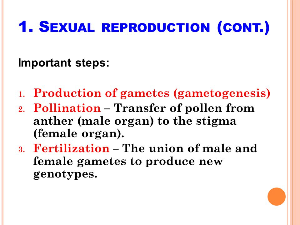 1. Sexual reproduction (cont.)