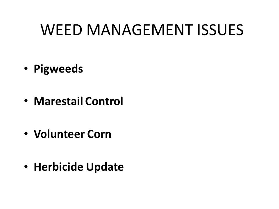 WEED MANAGEMENT ISSUES