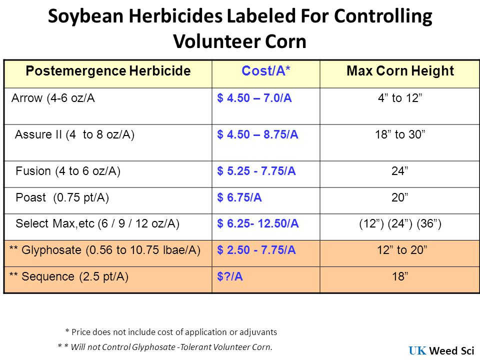 Soybean Herbicides Labeled For Controlling Volunteer Corn