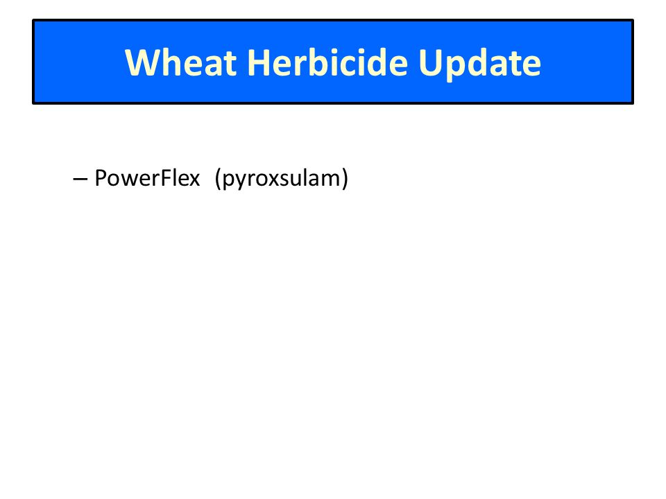 Wheat Herbicide Update