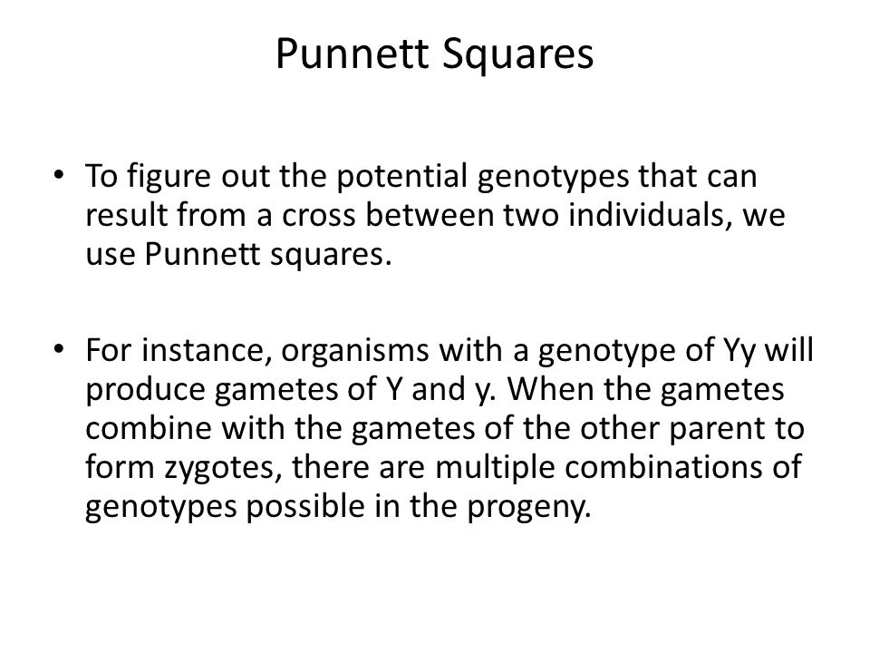 Punnett Squares To figure out the potential genotypes that can result from a cross between two individuals, we use Punnett squares.
