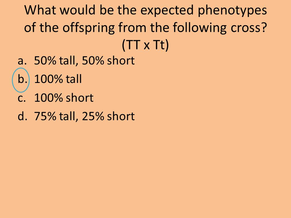 What would be the expected phenotypes of the offspring from the following cross (TT x Tt)