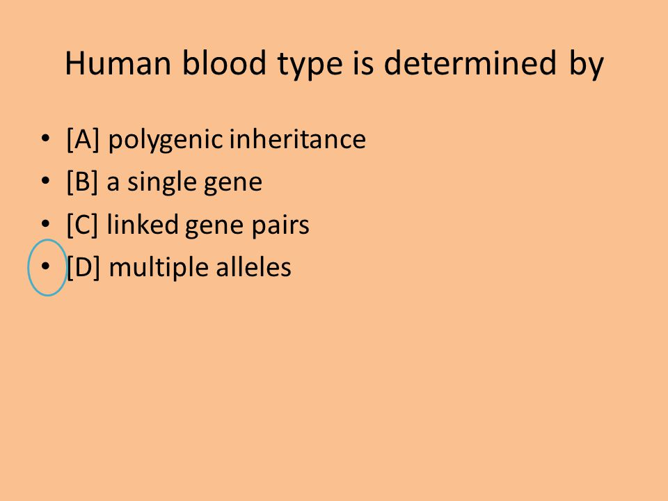 Human blood type is determined by