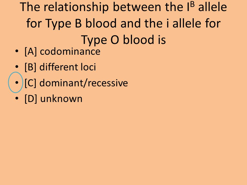 The relationship between the IB allele for Type B blood and the i allele for Type O blood is