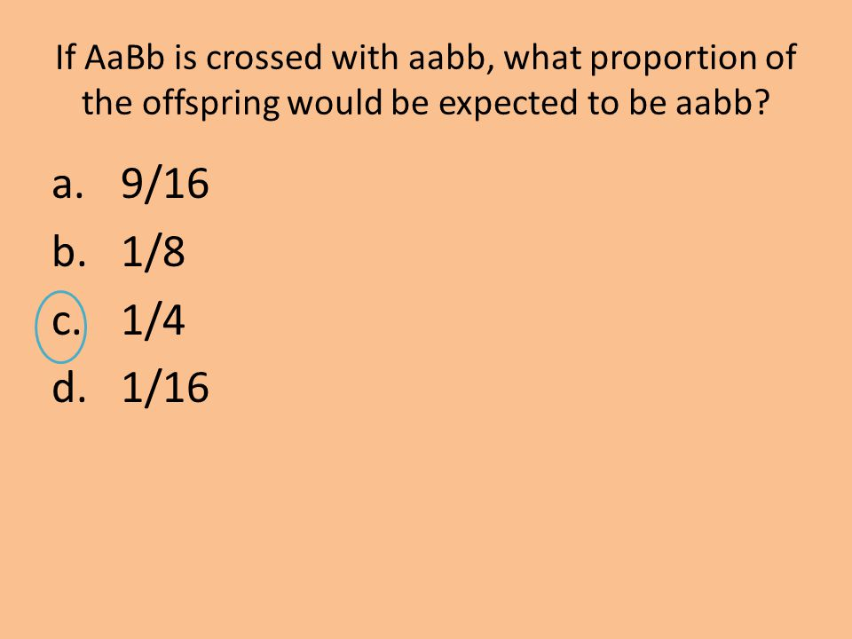 If AaBb is crossed with aabb, what proportion of the offspring would be expected to be aabb