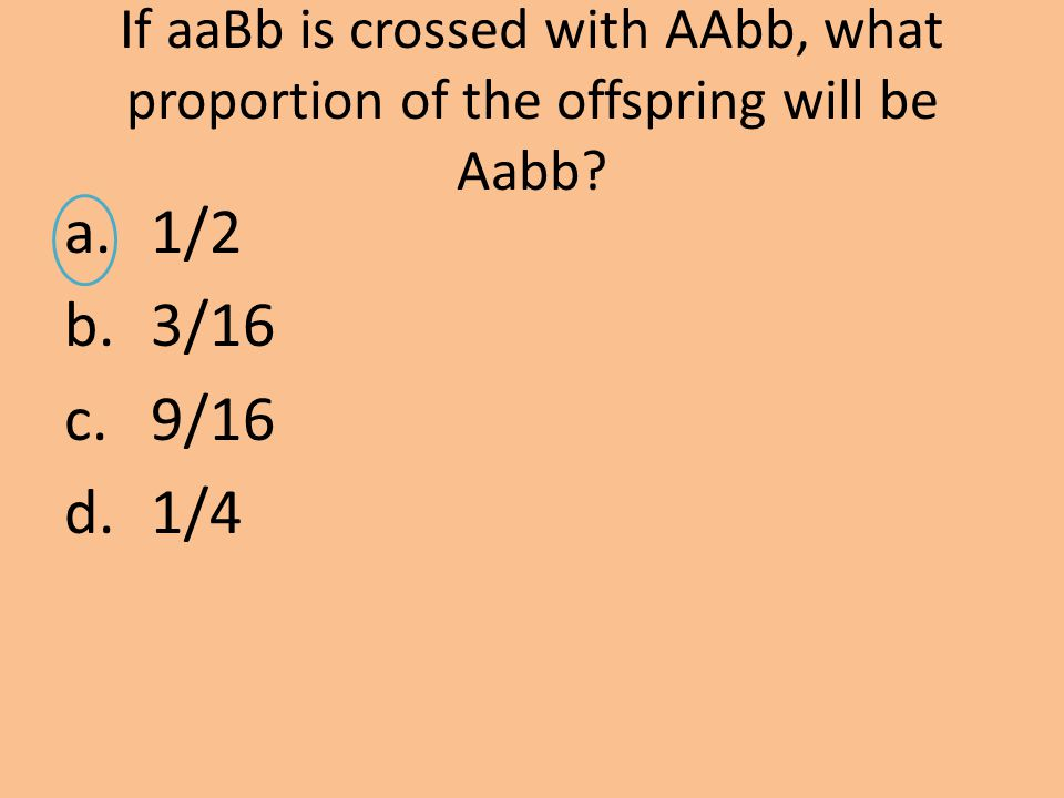 If aaBb is crossed with AAbb, what proportion of the offspring will be Aabb