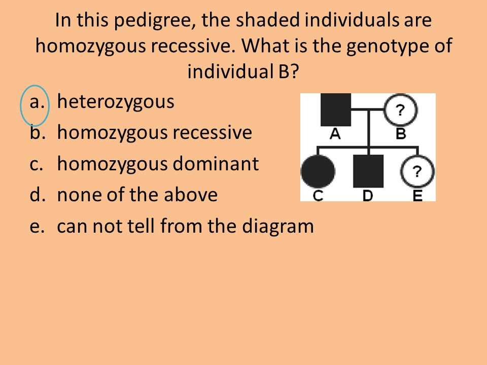 In this pedigree, the shaded individuals are homozygous recessive