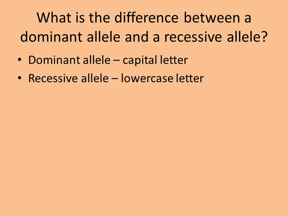 What is the difference between a dominant allele and a recessive allele