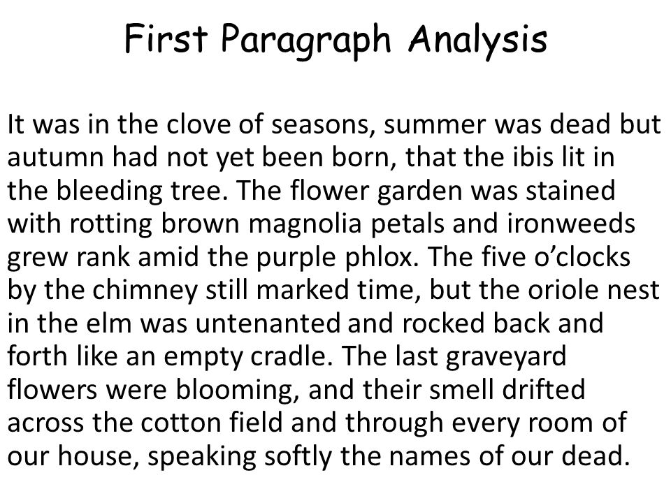 First Paragraph Analysis