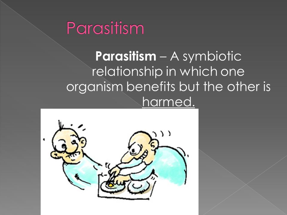 Parasitism Parasitism – A symbiotic relationship in which one organism benefits but the other is harmed.