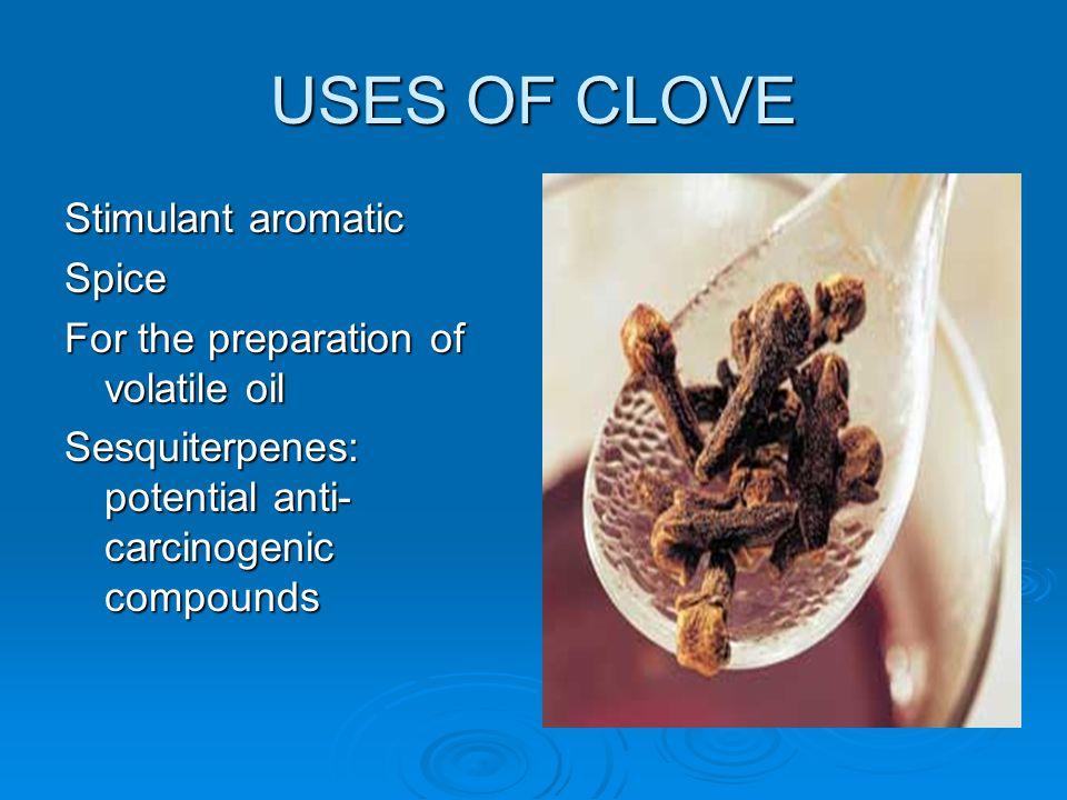 USES OF CLOVE Stimulant aromatic Spice