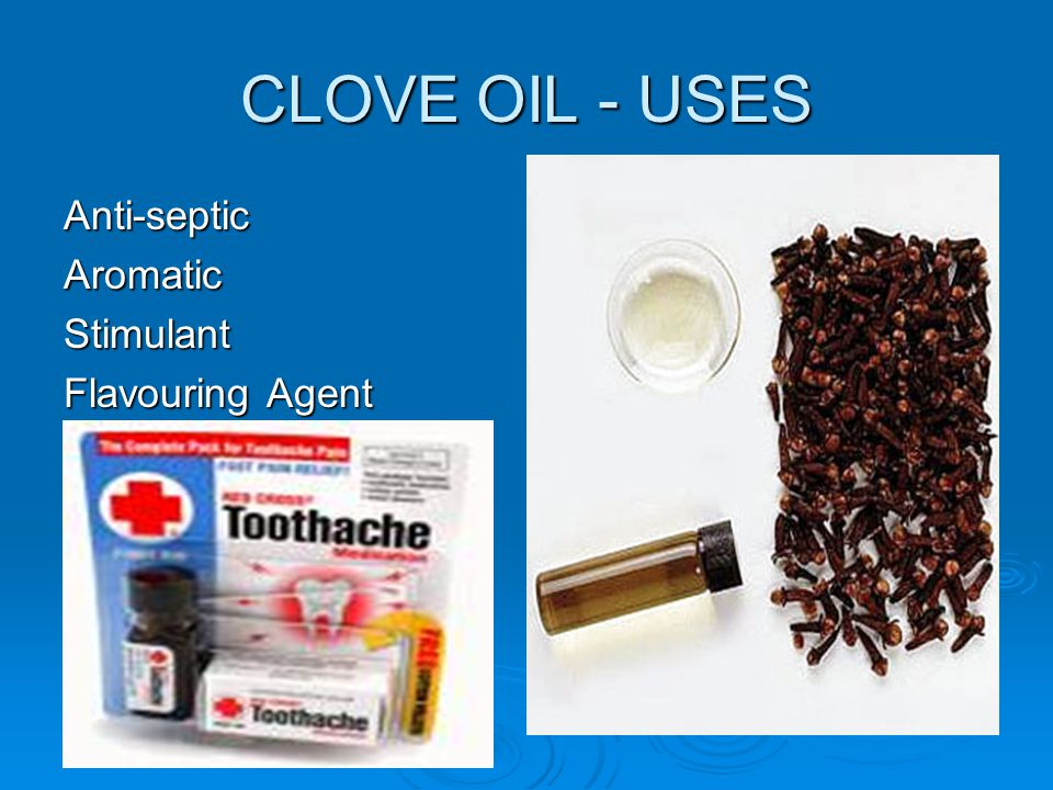 CLOVE OIL - USES Anti-septic Aromatic Stimulant Flavouring Agent
