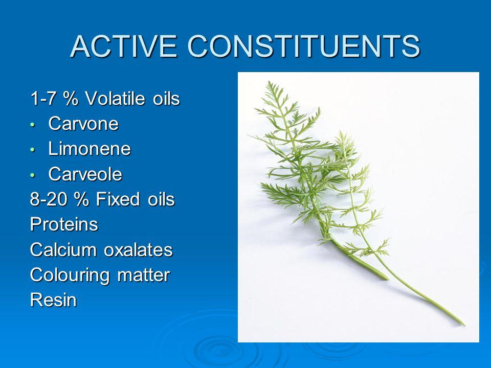 ACTIVE CONSTITUENTS 1-7 % Volatile oils Carvone Limonene Carveole