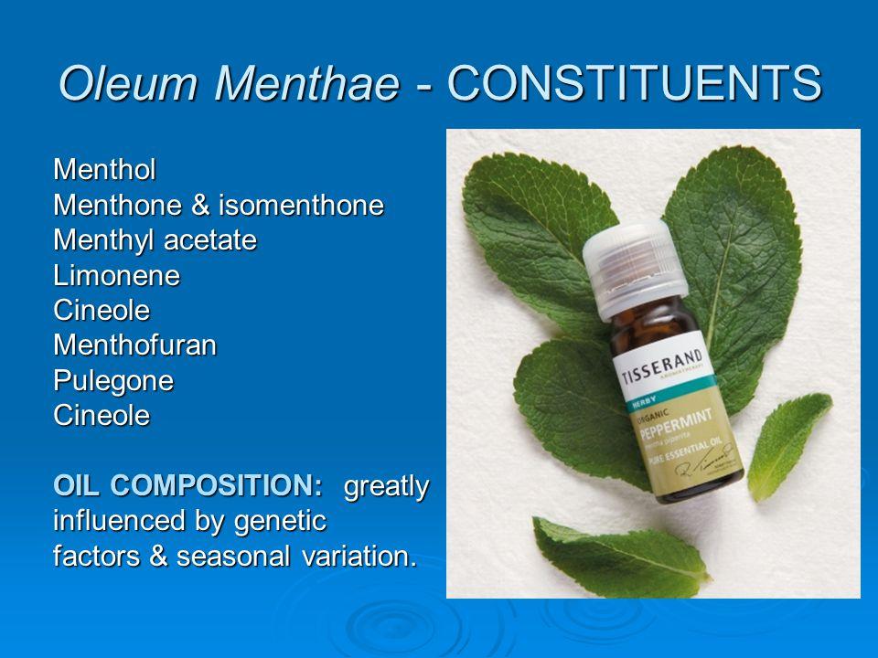 Oleum Menthae - CONSTITUENTS