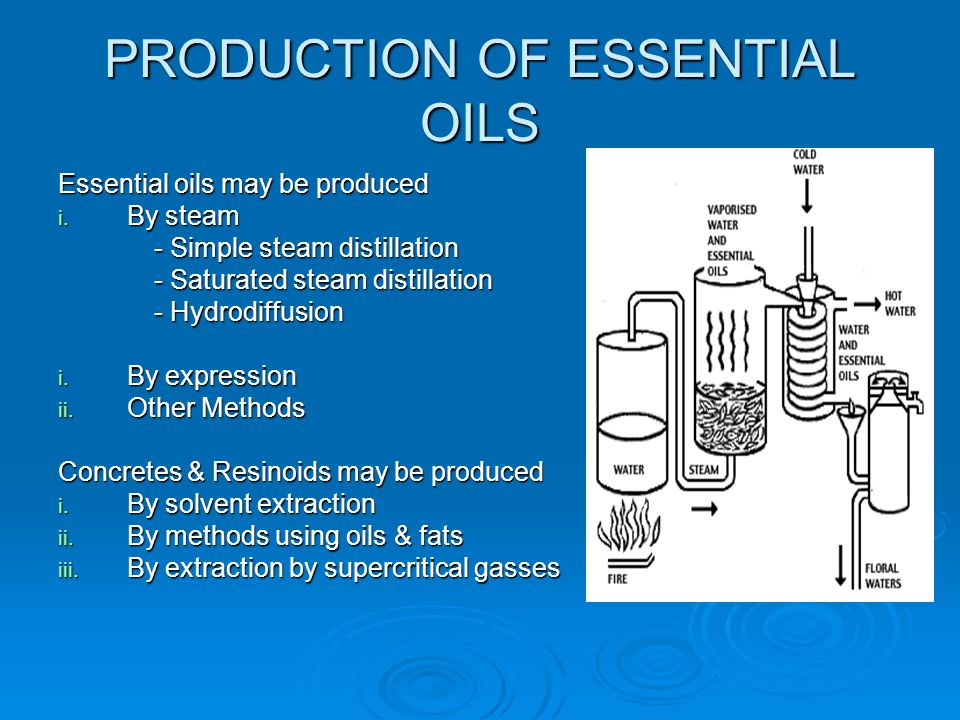 PRODUCTION OF ESSENTIAL OILS