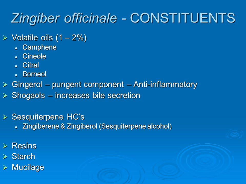 Zingiber officinale - CONSTITUENTS