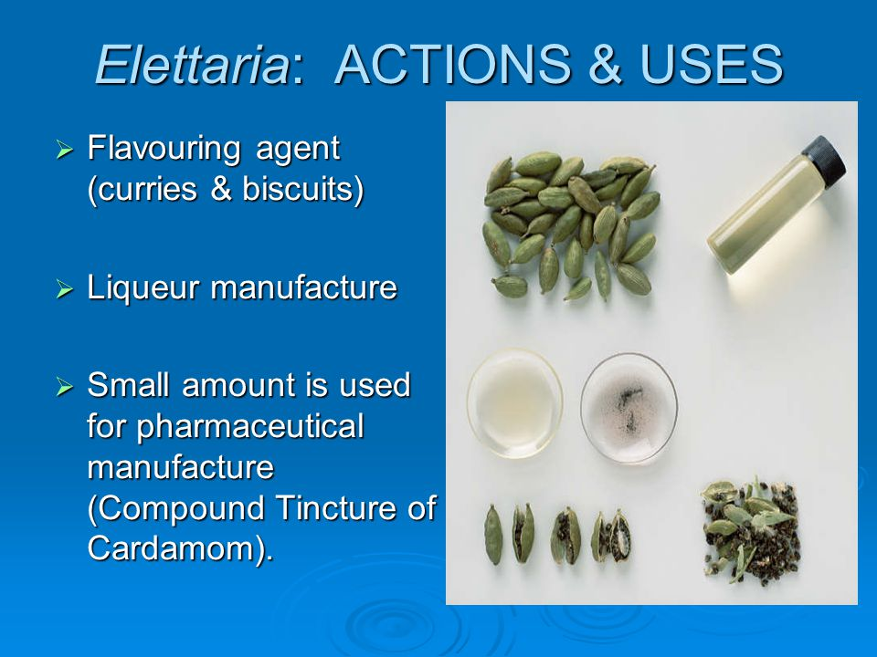Elettaria: ACTIONS & USES