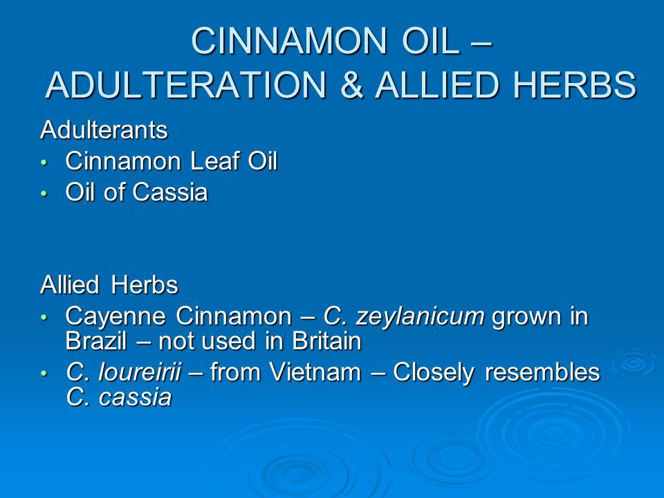 CINNAMON OIL – ADULTERATION & ALLIED HERBS