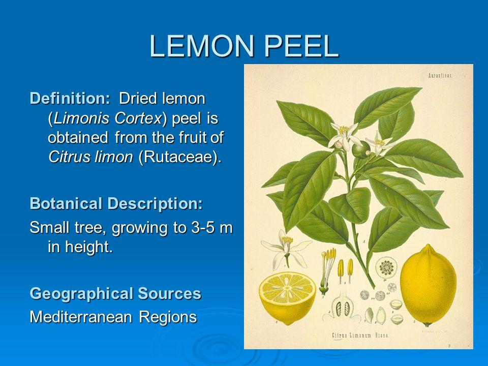 LEMON PEEL Definition: Dried lemon (Limonis Cortex) peel is obtained from the fruit of Citrus limon (Rutaceae).