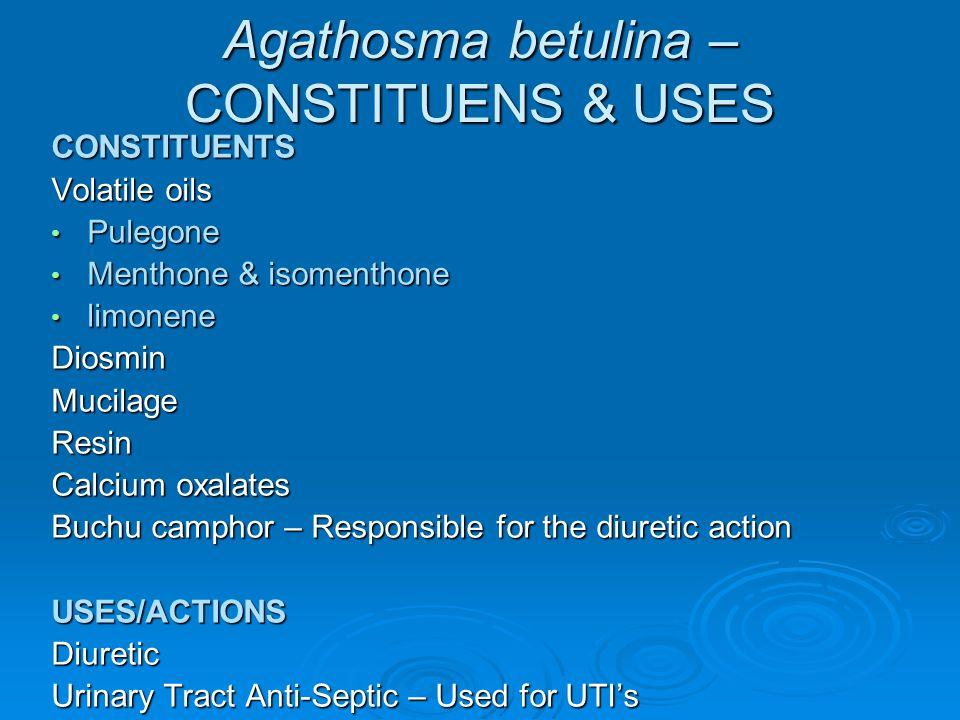 Agathosma betulina – CONSTITUENS & USES