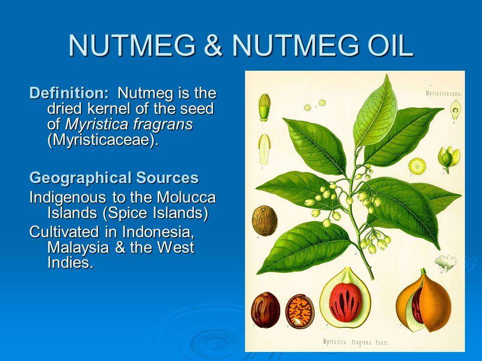NUTMEG & NUTMEG OIL Definition: Nutmeg is the dried kernel of the seed of Myristica fragrans (Myristicaceae).