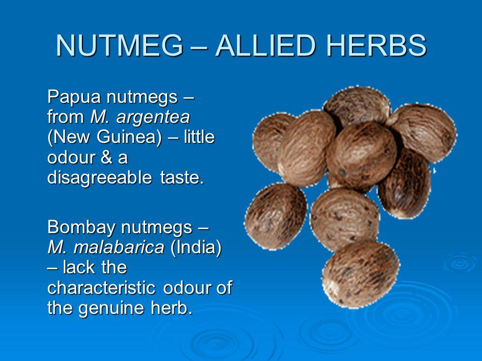 NUTMEG – ALLIED HERBS Papua nutmegs – from M. argentea (New Guinea) – little odour & a disagreeable taste.