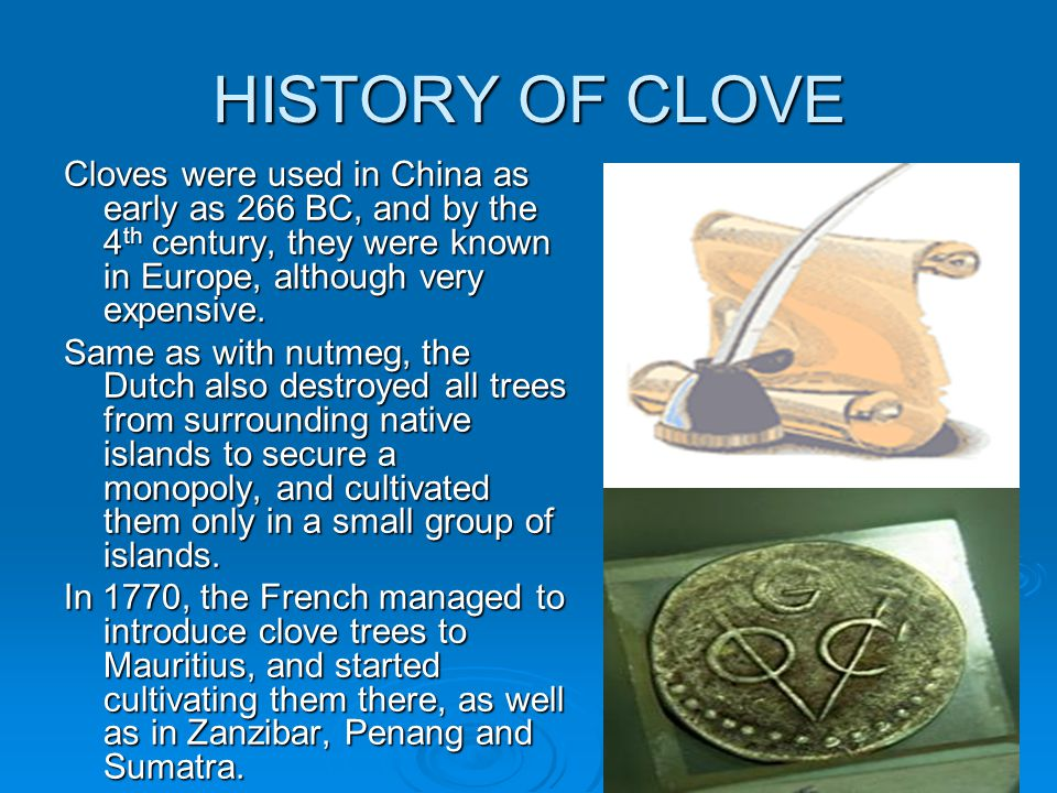 HISTORY OF CLOVE Cloves were used in China as early as 266 BC, and by the 4th century, they were known in Europe, although very expensive.