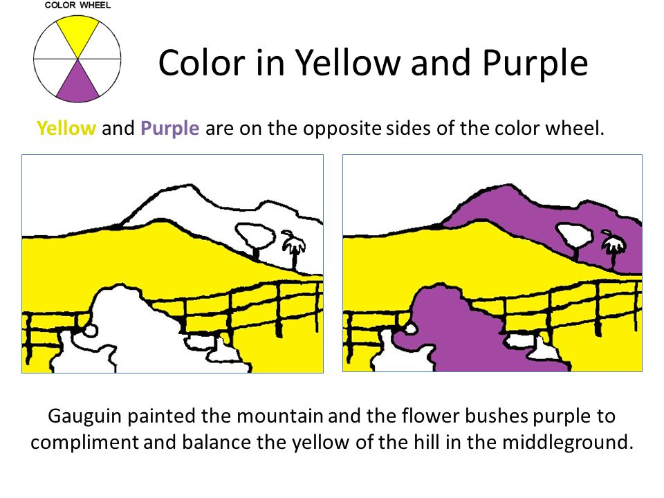 Color in Yellow and Purple