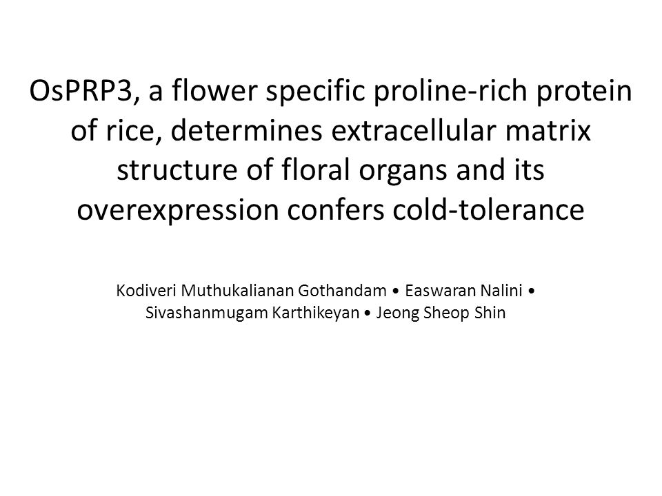 OsPRP3, a flower specific proline-rich protein of rice, determines extracellular matrix structure of floral organs and its overexpression confers cold-tolerance