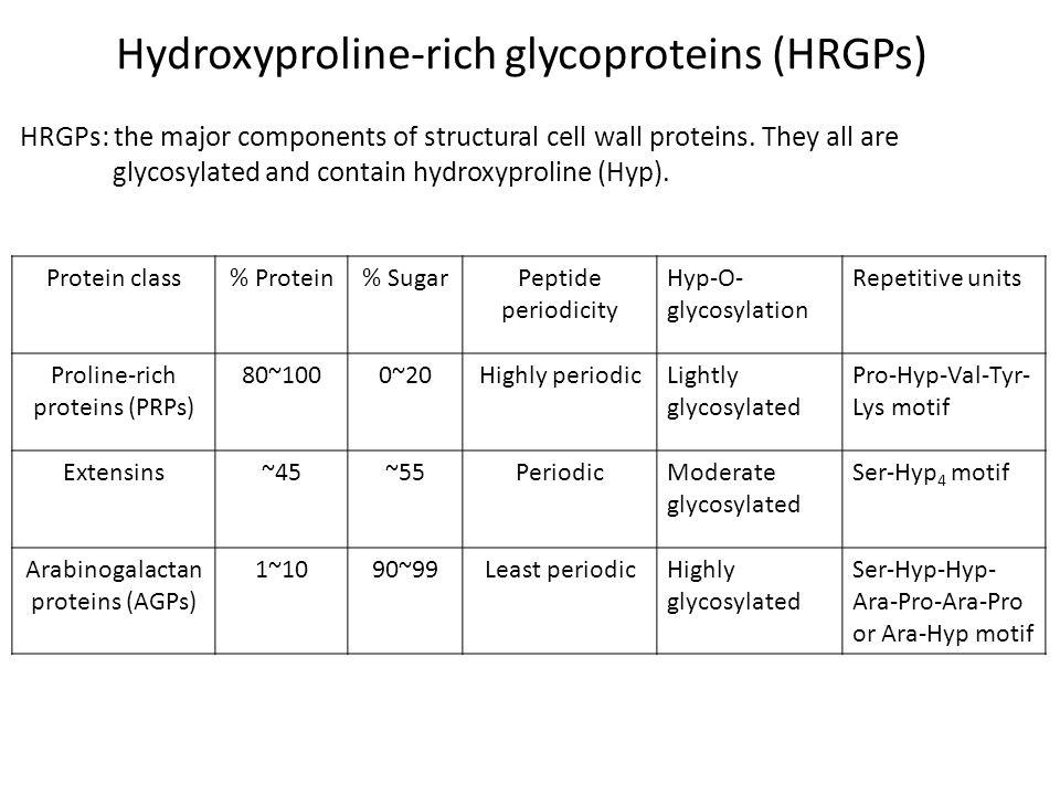 Hydroxyproline-rich glycoproteins (HRGPs)