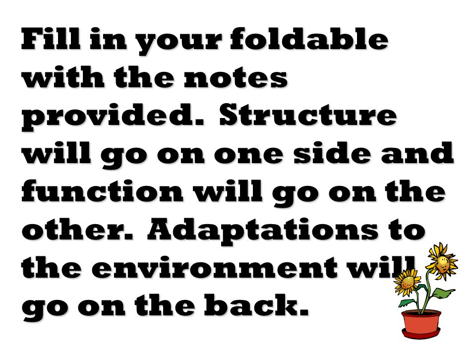 Fill in your foldable with the notes provided