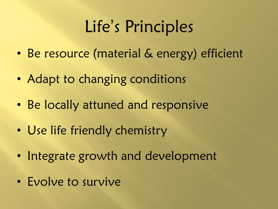 Life's Principles Be resource (material & energy) efficient