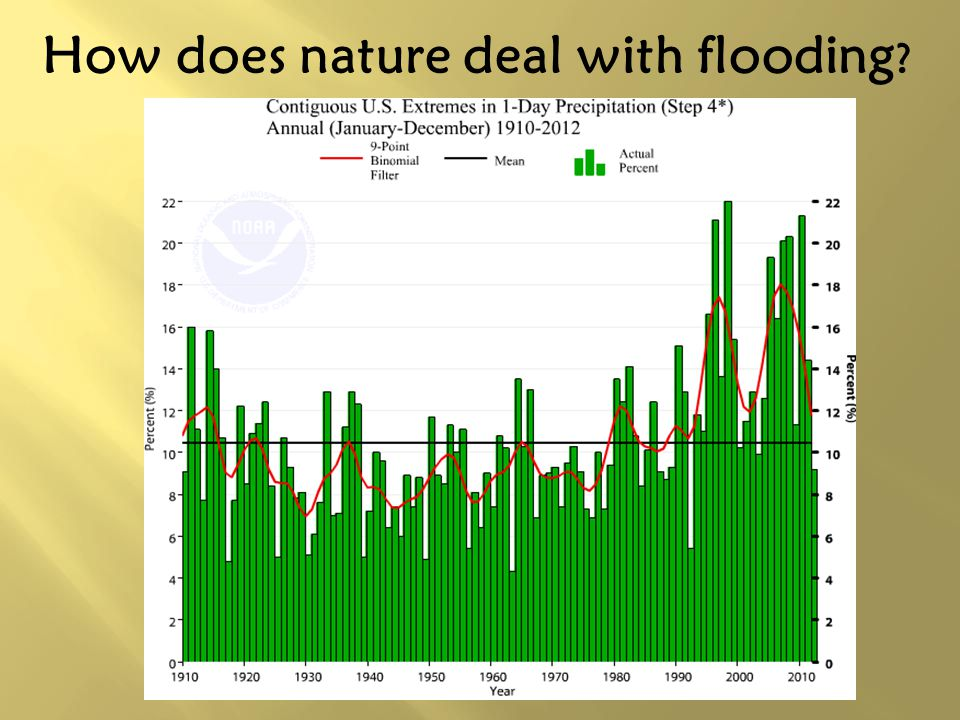 How does nature deal with flooding