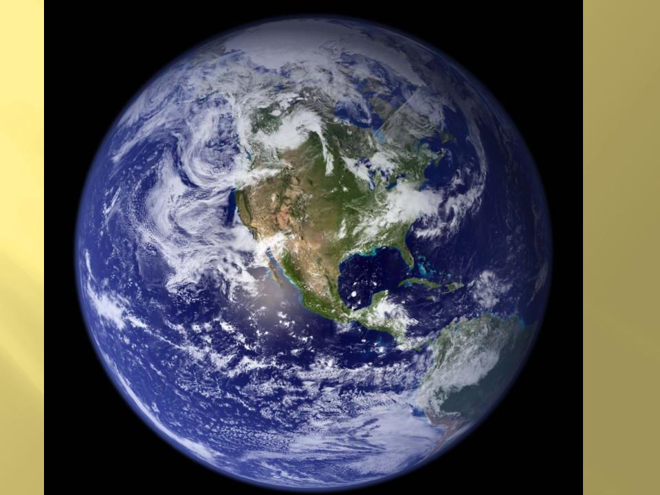 The earth is home to anywhere from 8 – 30 million species, some estimate as many as 100 million species.