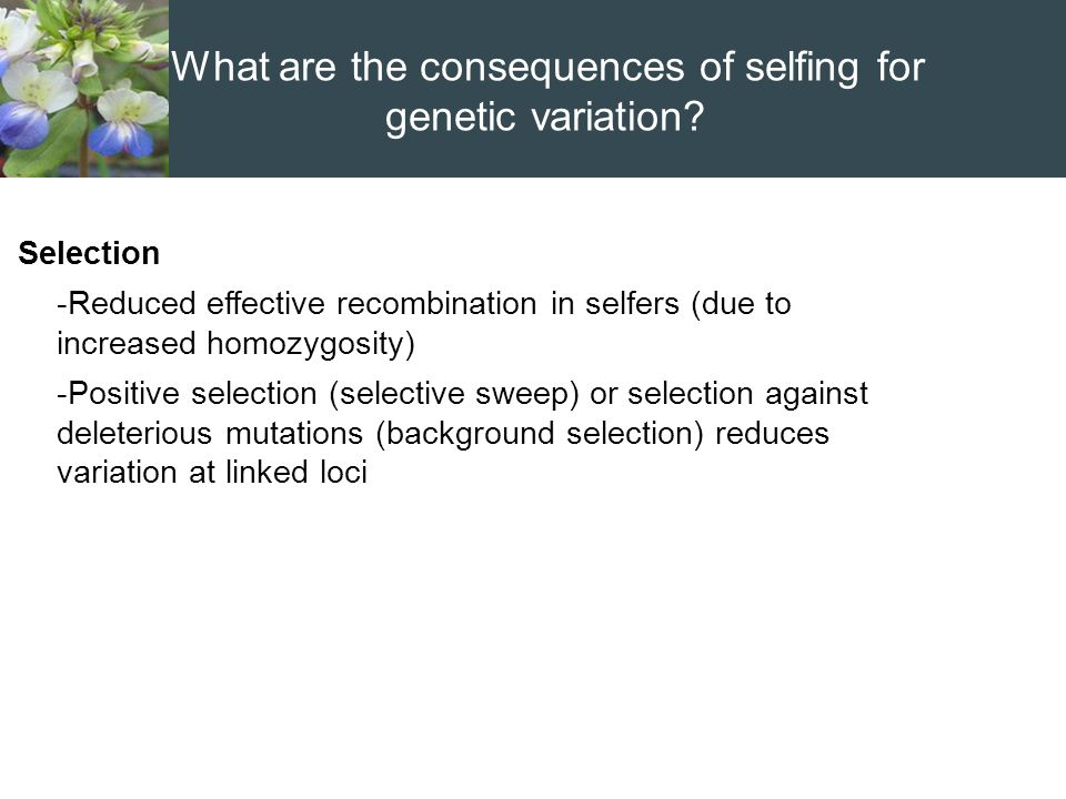 What are the consequences of selfing for genetic variation