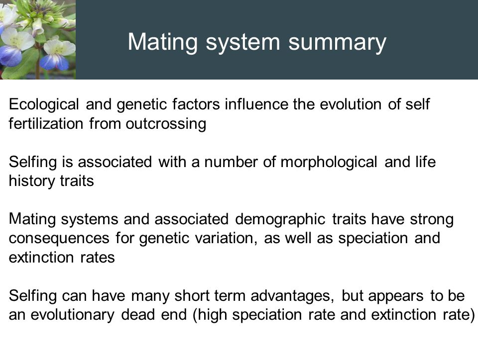 Mating system summary Ecological and genetic factors influence the evolution of self fertilization from outcrossing.