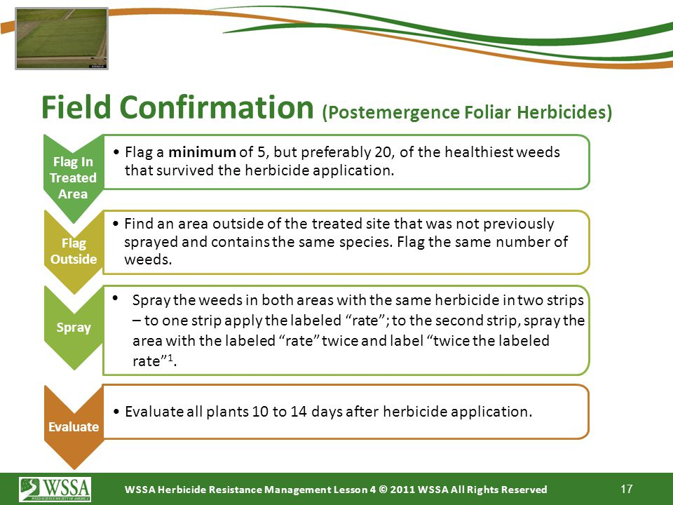 Field Confirmation (Postemergence Foliar Herbicides)