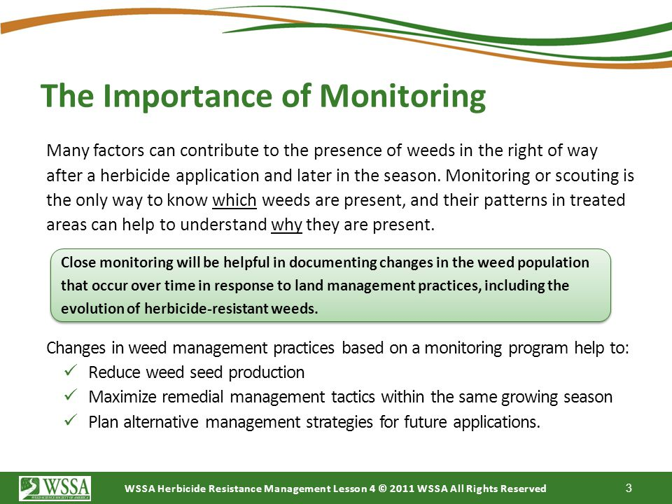The Importance of Monitoring