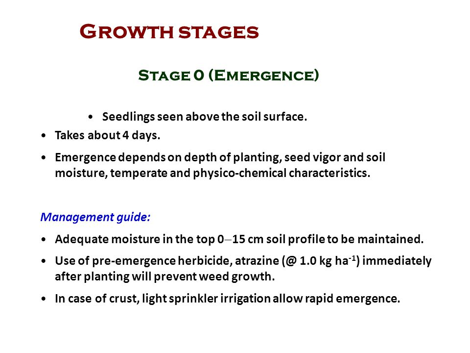 Growth stages Stage 0 (Emergence)