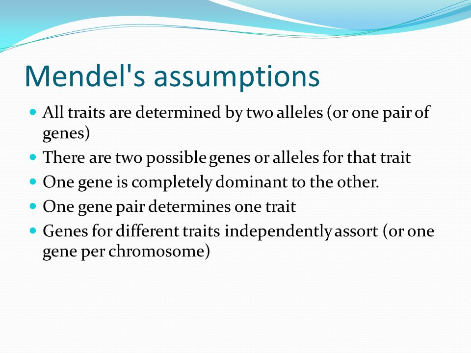 Mendel s assumptions All traits are determined by two alleles (or one pair of genes) There are two possible genes or alleles for that trait.
