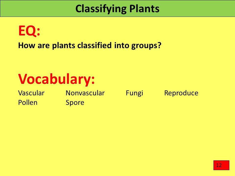 EQ: Vocabulary: Classifying Plants
