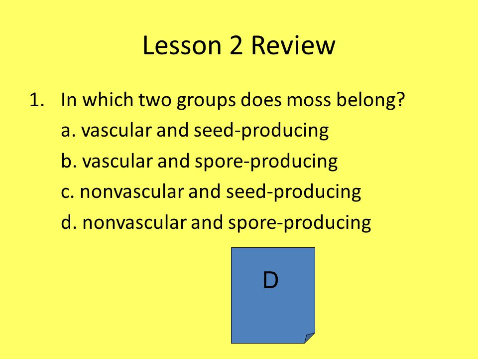 Lesson 2 Review D In which two groups does moss belong