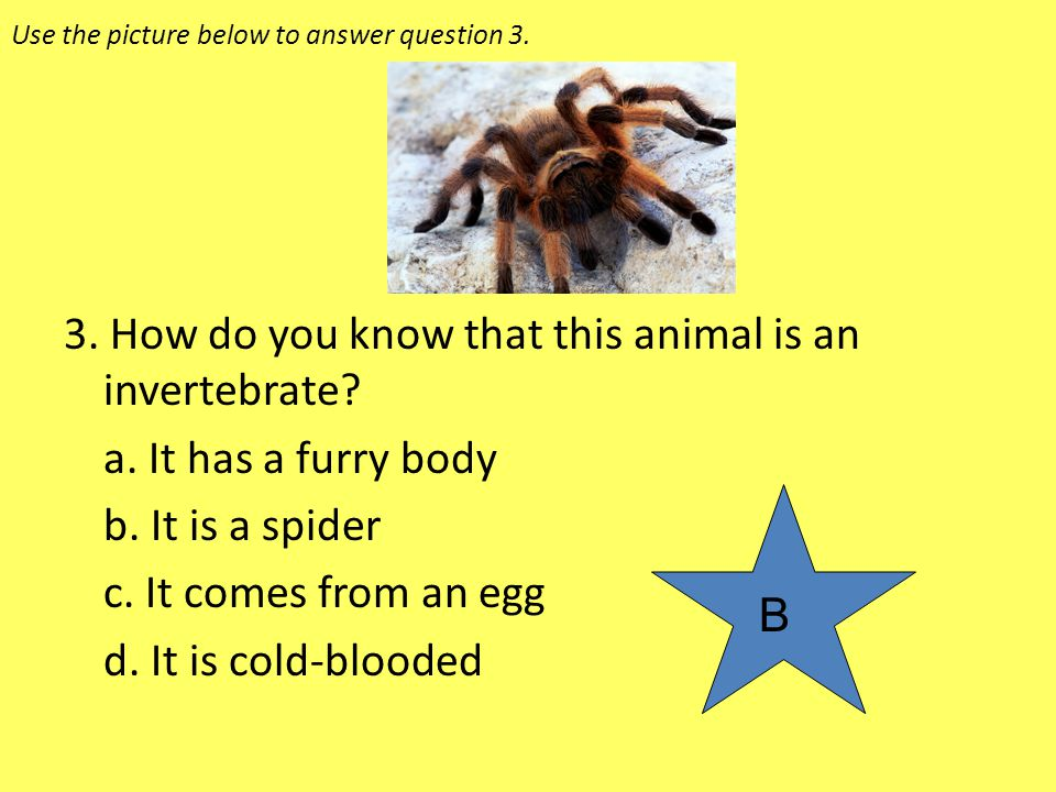 Use the picture below to answer question 3.