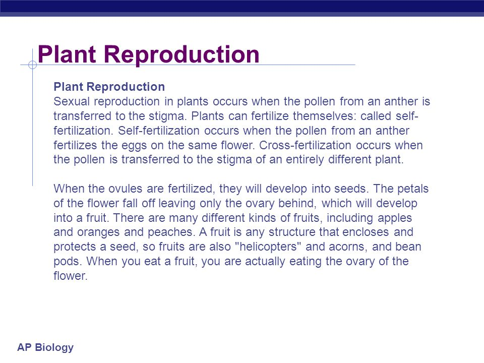 Plant Reproduction Plant Reproduction