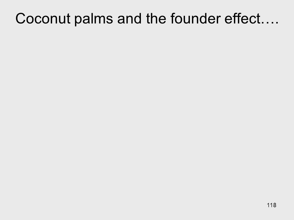 Coconut palms and the founder effect….