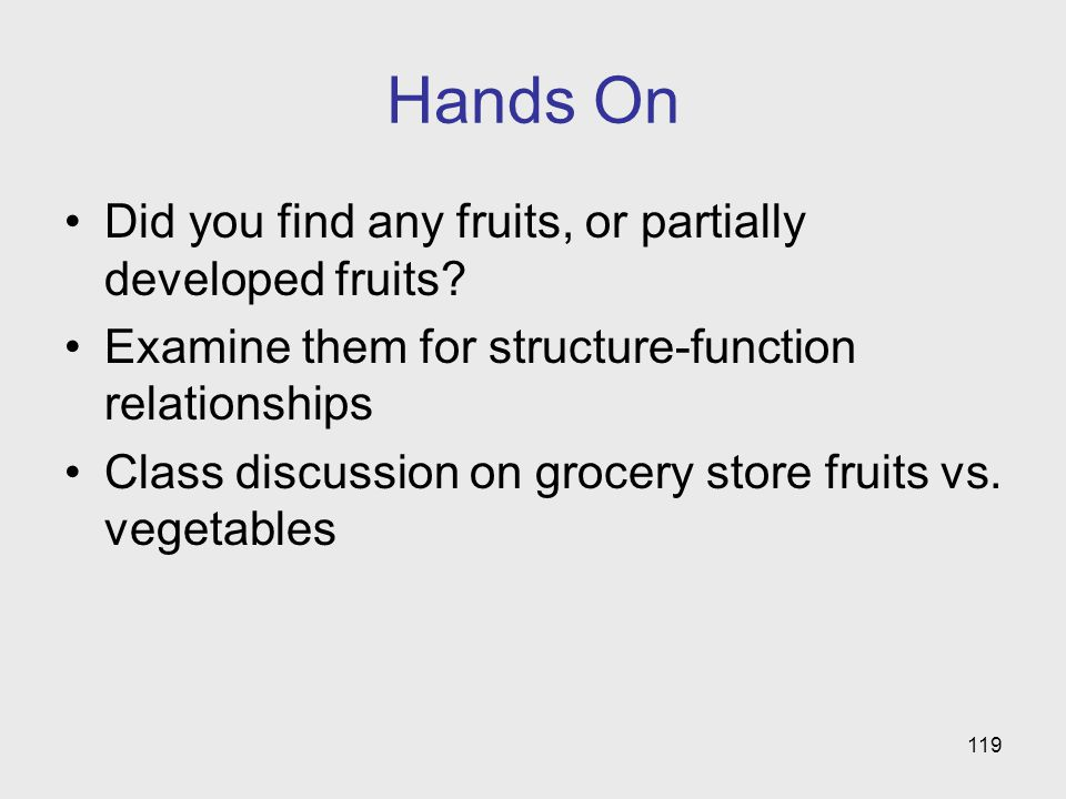 Hands On Did you find any fruits, or partially developed fruits