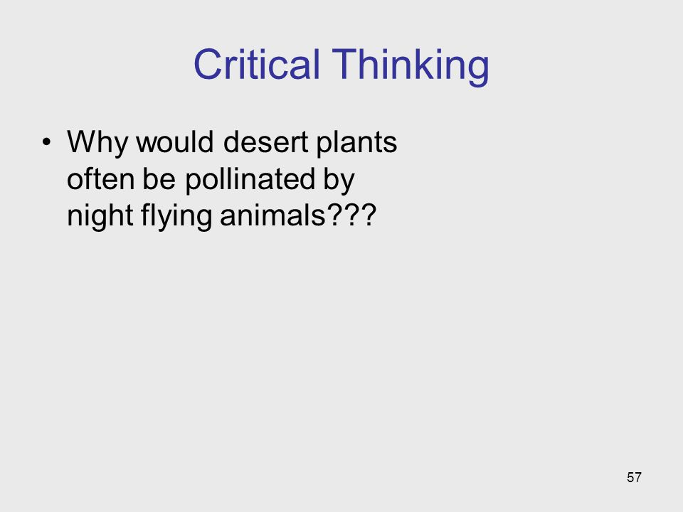 Critical Thinking Why would desert plants often be pollinated by night flying animals